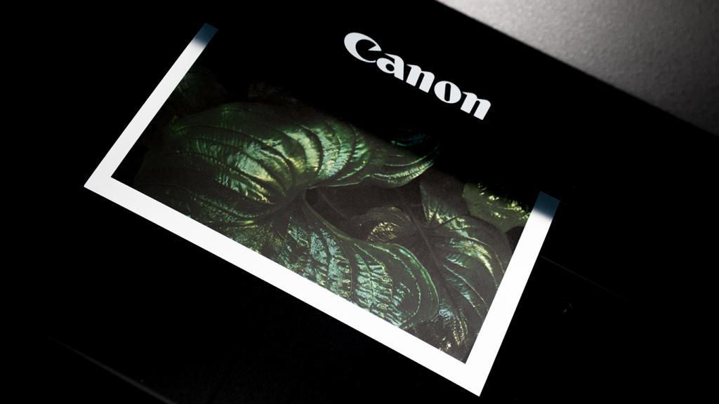 A canon printer printing a photo